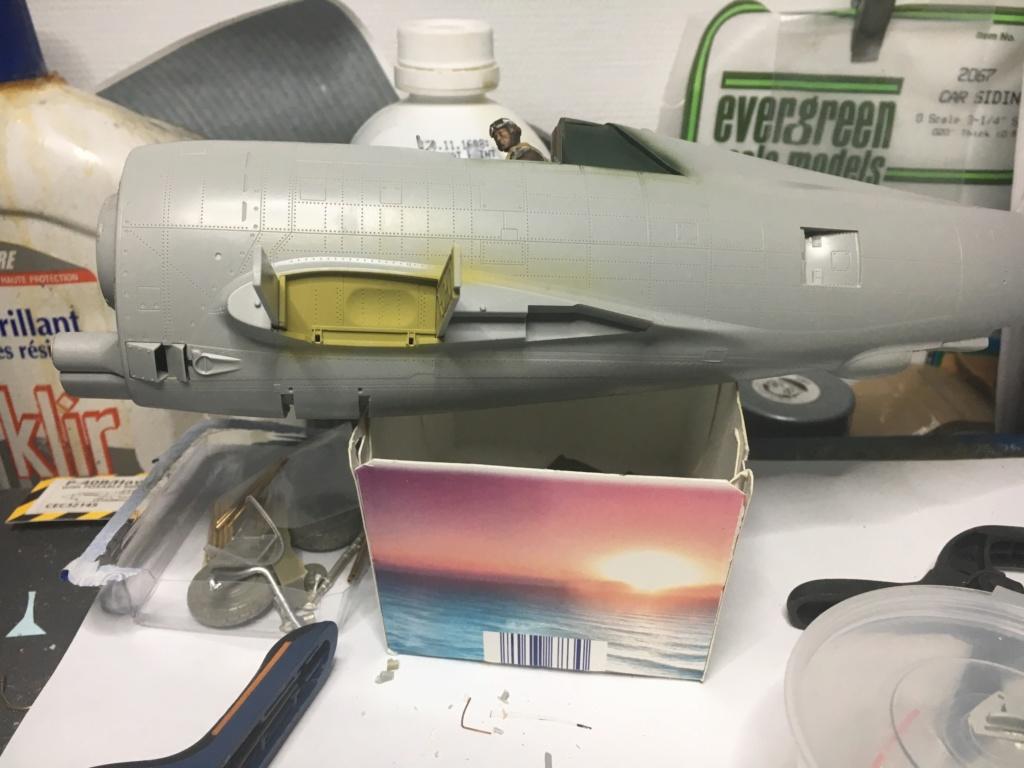 P47-D razorback 1/32 TRUMPETER  P40_ec13