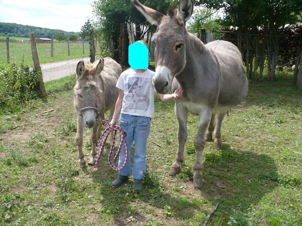 HUGOLINE - ânesse née en 1990 - adoptée en juin 2011 par Malik70 Hugoli14