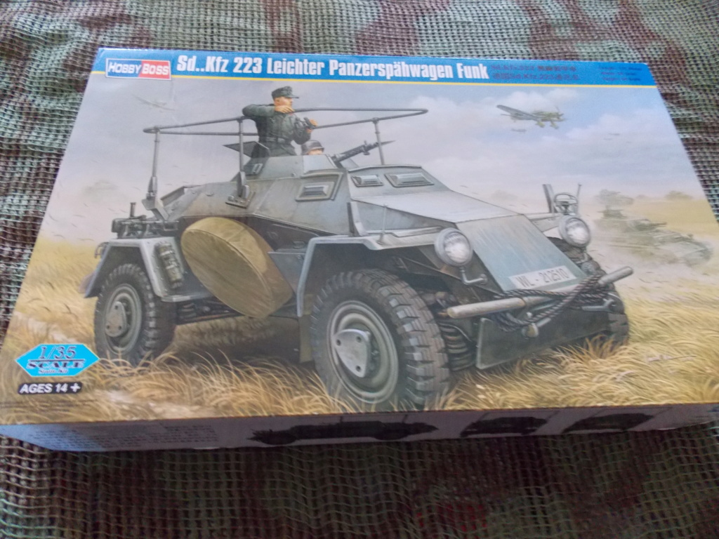 "12  SS ""BABY DIVISION"" Panther takom sdkfz 223hobby boss  1/35 - Page 2 Dscn7840"