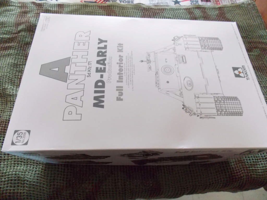 "12  SS ""BABY DIVISION"" Panther takom sdkfz 223hobby boss  1/35 - Page 2 Dscn7842"