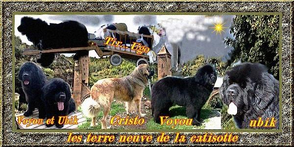 presentation Les_t116