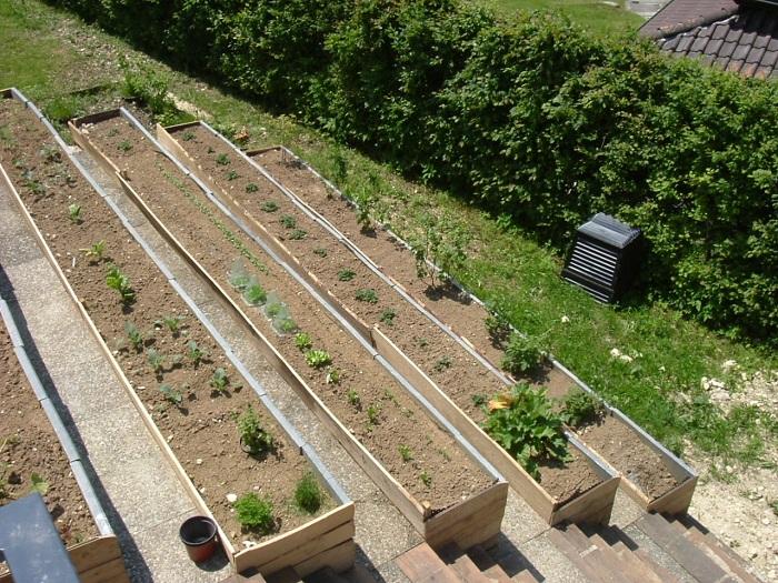 Jardin en terrasses Dscf6510