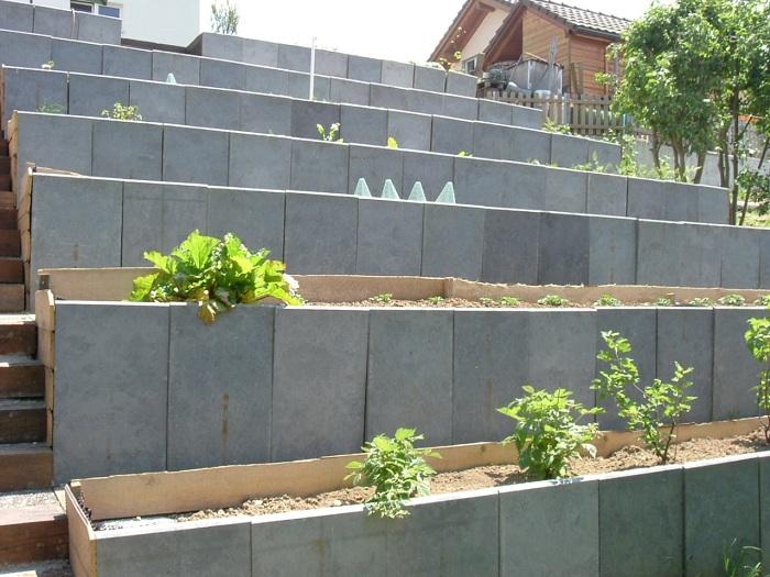 Jardin en terrasses Dscf6611