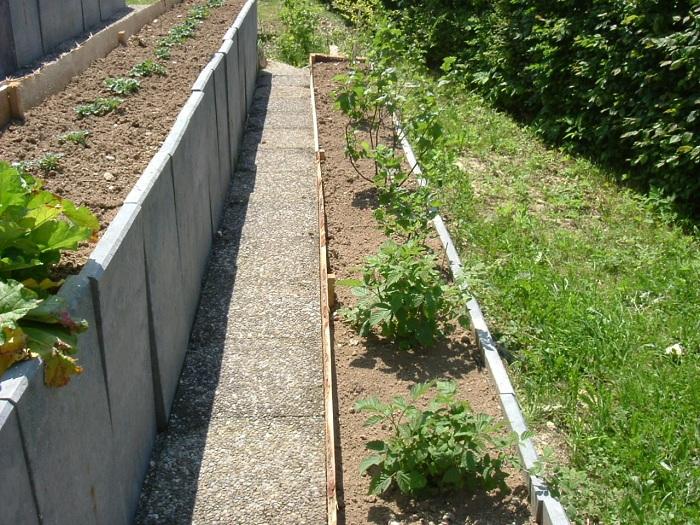 Jardin en terrasses Dscf6613
