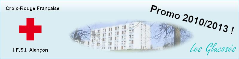 ESI IFSI Alençon promo 2010/2013