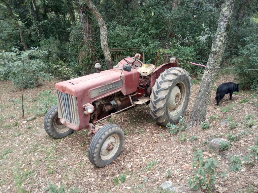 He comprado un International-Harvester B 414 Diesel de 1964. Img_2014