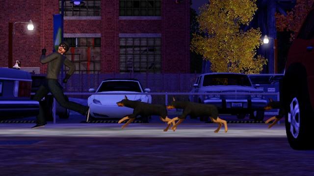 Les Sims3 Animaux & Cie  Ts3_pe11