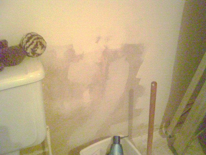 Travail dans la salle de bain de mon frère Pict0012