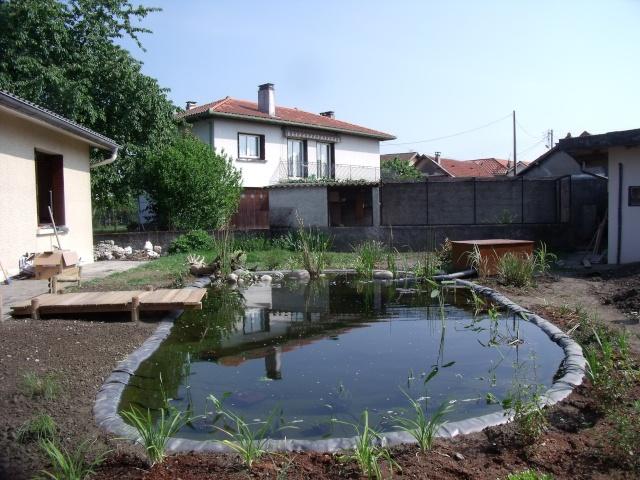 Construction d'un bassin d'environ 16000L Dscf1421