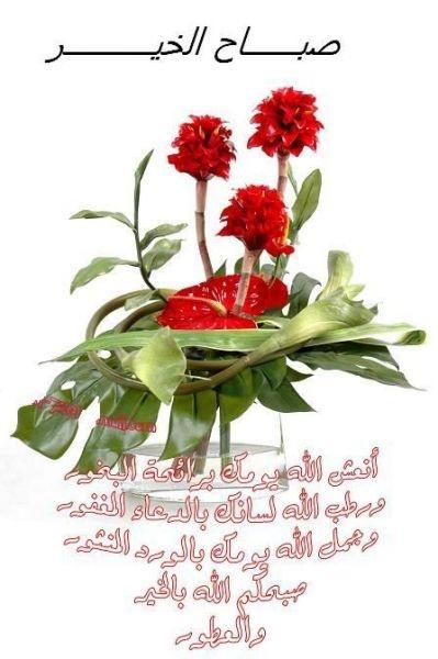 صباح الخيرات للجميع 13_bmp11