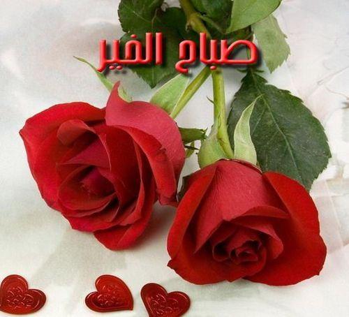 صباح الخيرات للجميع Cid_im10