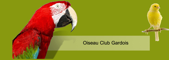 créer un forum : Oiseau Club Gardois - Portail Header11