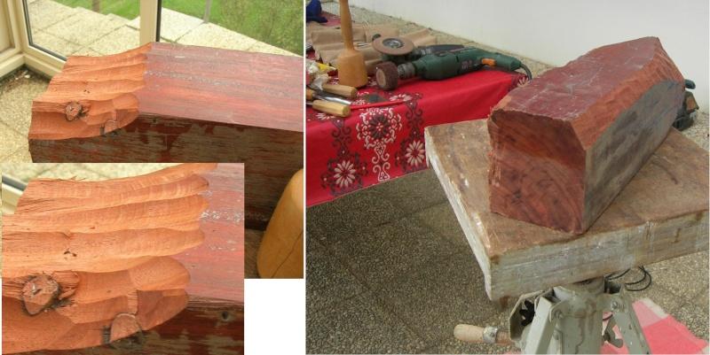 Que pensez-vous de ces bois pour sculpter ? Dscn7911