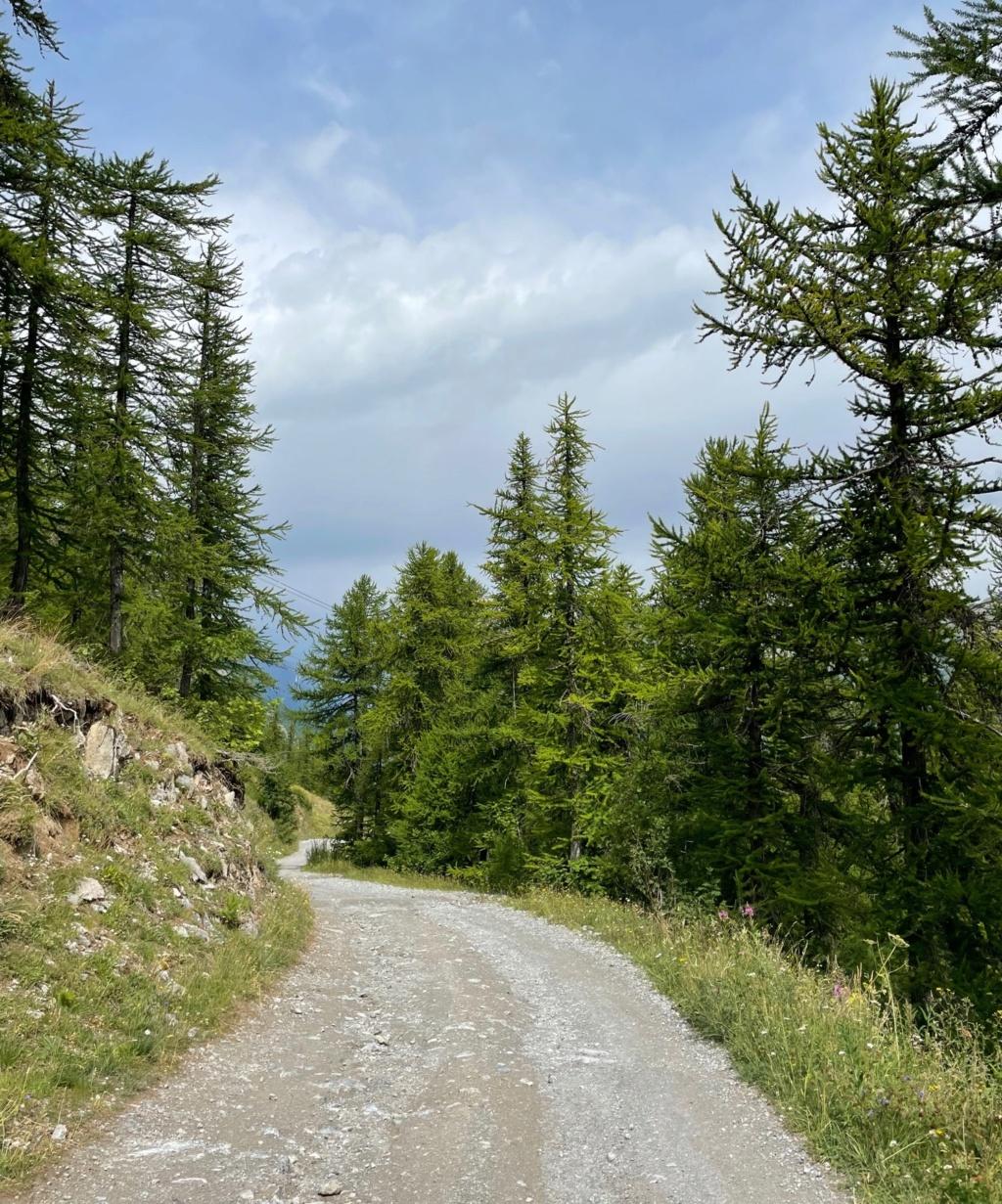XTZ 750 de 1989 d'Umul : Route des Grandes Alpes Img_9124