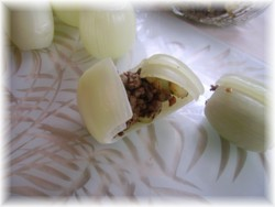 Oignons farcis sucrés salés Pict0615
