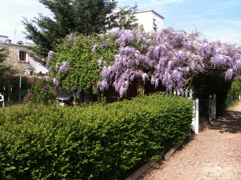 Jardins Img_0410