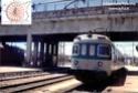 013 - Maggio 2011 - Regionale di Prestigio 2011_510