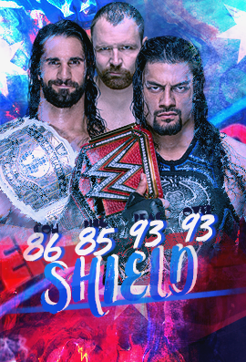 Mr Awesome Shield10