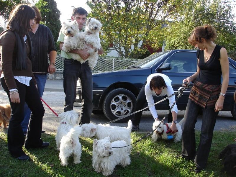 ---A G-----09/10/2010-------LES TEMPS FORTS EN PHOTOS------- - Page 3 Dsc06919