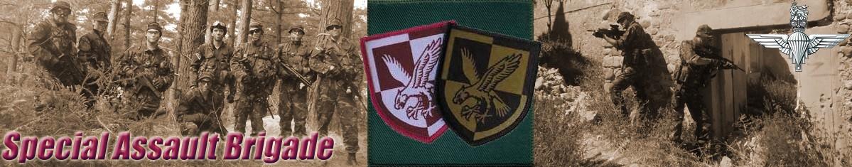 Special Assault Brigade SAB