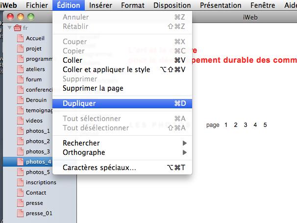Enregistrer page/site comme modèle Captur13