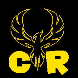 Création team mario kart wii Logo_c11