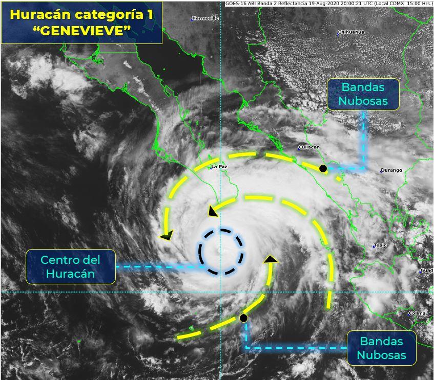 hurricanes 2020 11820810
