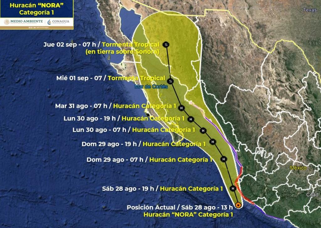hurricanes 2021 P-777310