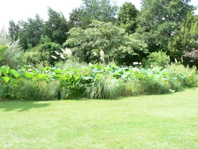le jardin des martels dans le tarn Le_jar12
