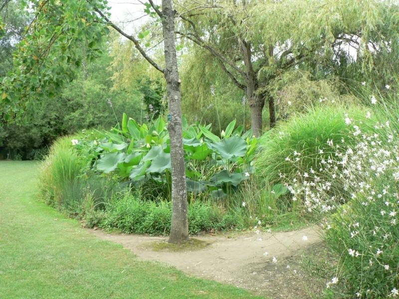 le jardin des martels dans le tarn Le_jar25