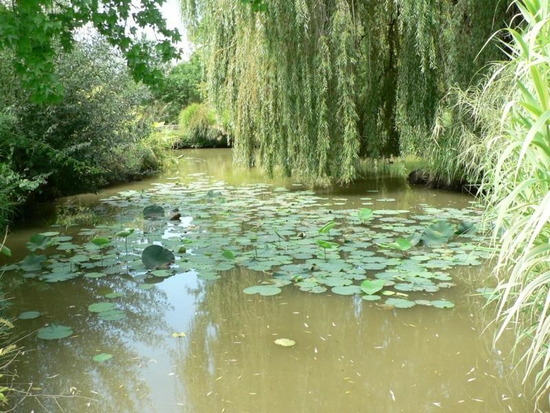 le jardin des martels dans le tarn Le_jar28