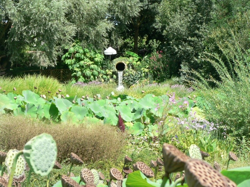 le jardin des martels dans le tarn Le_jar36