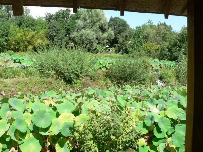 le jardin des martels dans le tarn Le_jar37