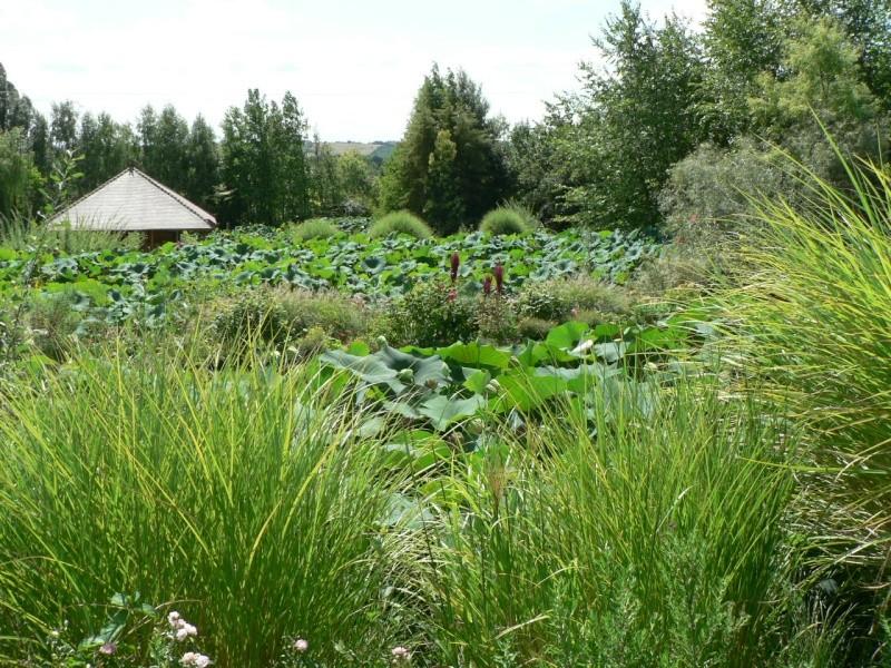 le jardin des martels dans le tarn Le_jar45