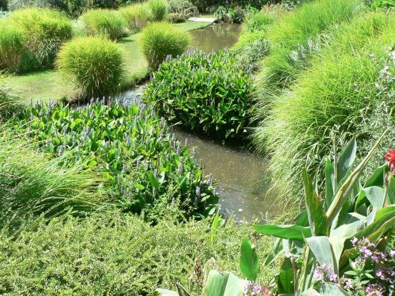 le jardin des martels dans le tarn Le_jar48