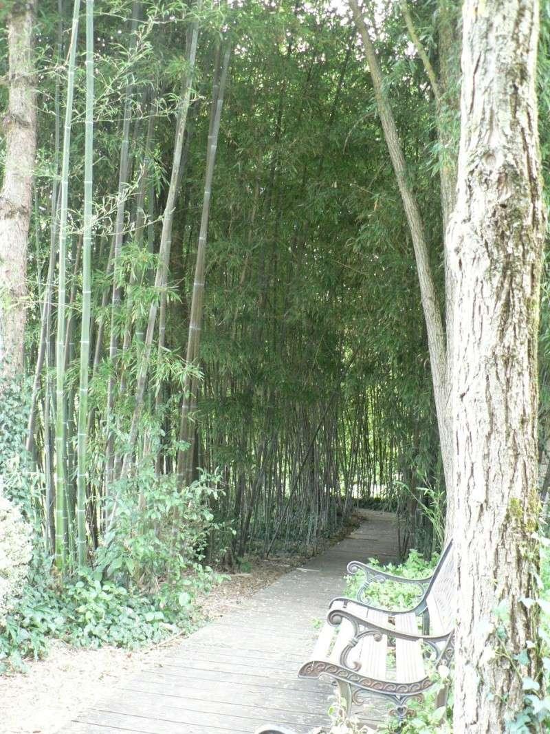 le jardin des martels dans le tarn Le_jar55