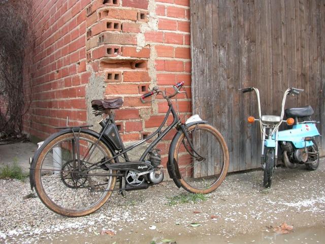Nos balades en cyclo Dscn6313