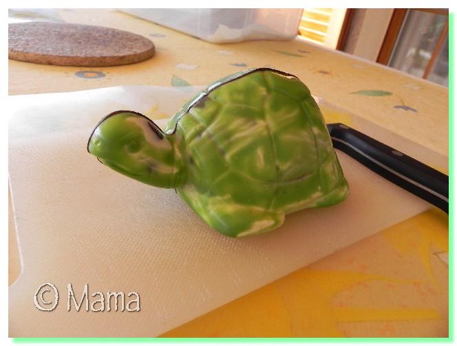 Dissection d'une tortue Paques23