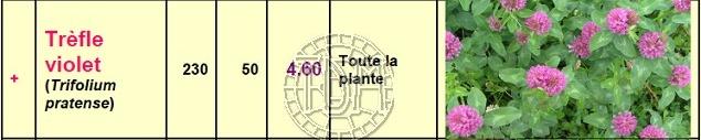 Alimentation des tortues terrestres méditerranéennes Pfin_t10