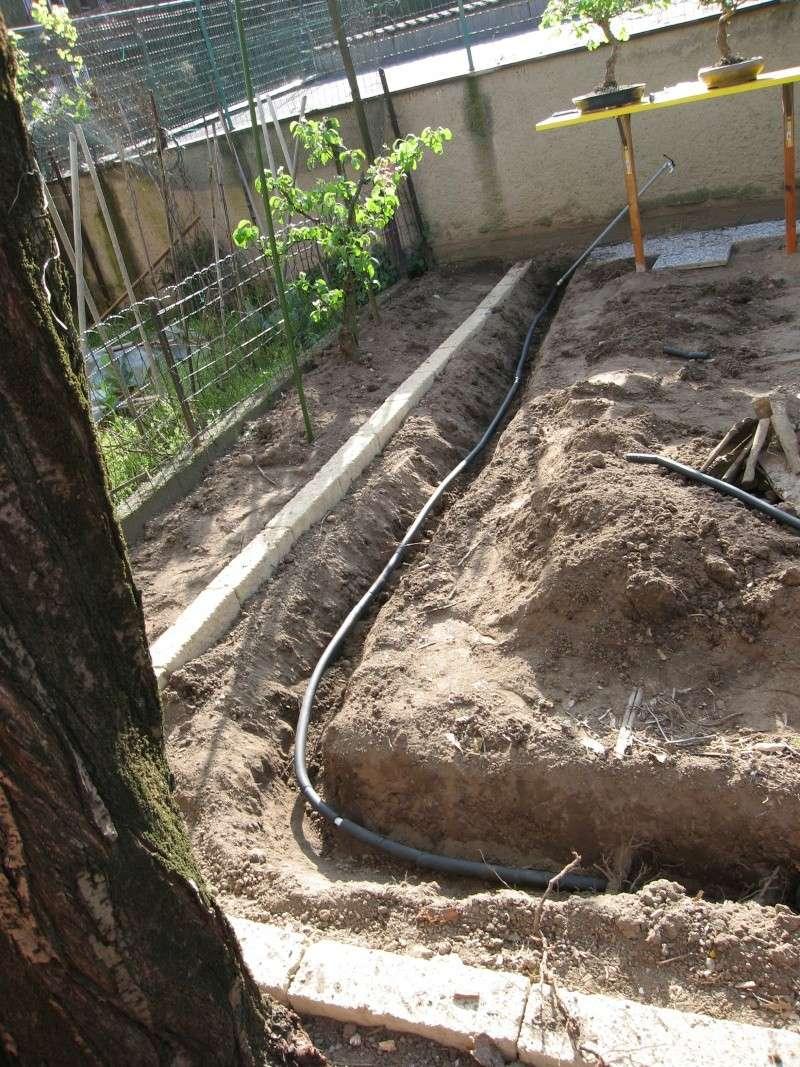 Dove coltiviamo i nostri bonsai - Pagina 3 Img_2112