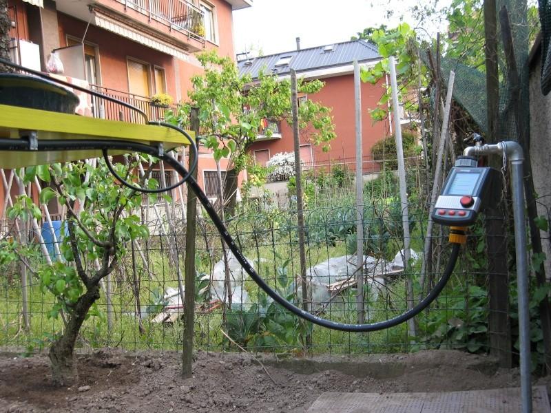 Dove coltiviamo i nostri bonsai - Pagina 3 Img_2113