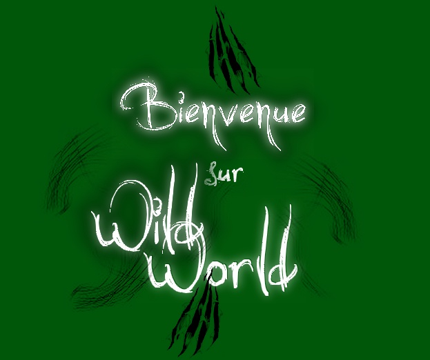Wild World Bienve10