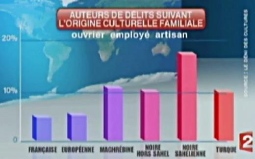 Délinquance : statistiques par groupe ethnique au JT de France 2 ! (vidéo) Delinc10