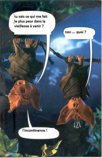 Le comptoir des belges... - Page 4 Chauve10