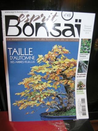 esprit bonsai n°48 Pa173710