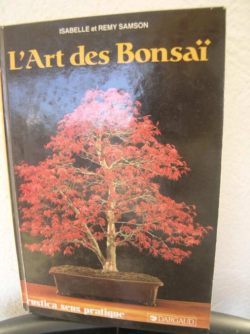 l'art des bonsai Pa283711