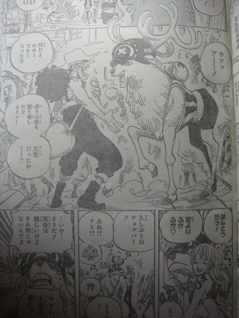 One Piece Manga 600 Spoiler Pics 111