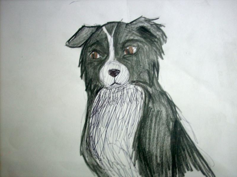 Dog Sketches Dscn0718