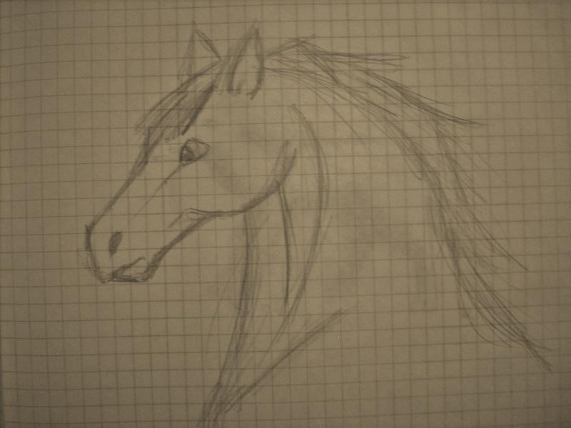 Horse Sketches Dscn0719
