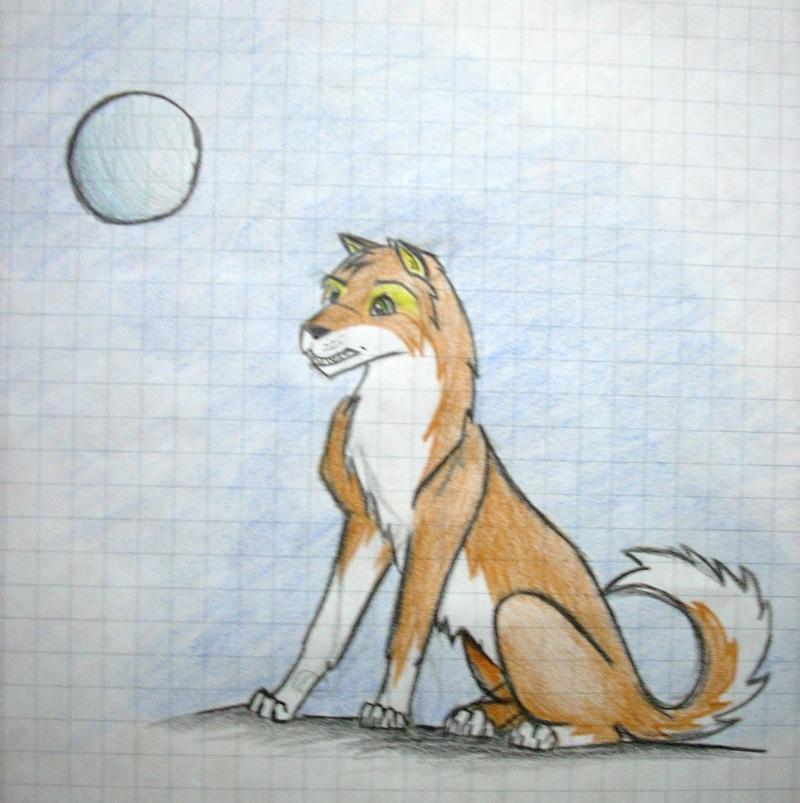 Crush (My first caricature fox) Dscn0813